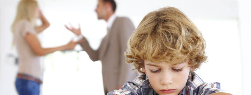 child custody options